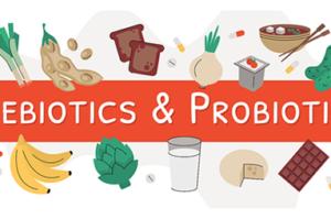 Prebiotics and Probiotics